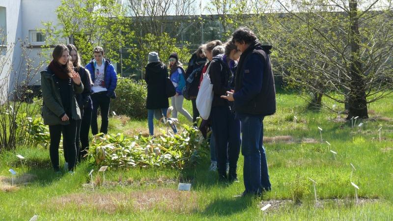 Kwietniowa Dydaktyka w Ogrodzie Botanicznym KCRZG w Bydgoszczy