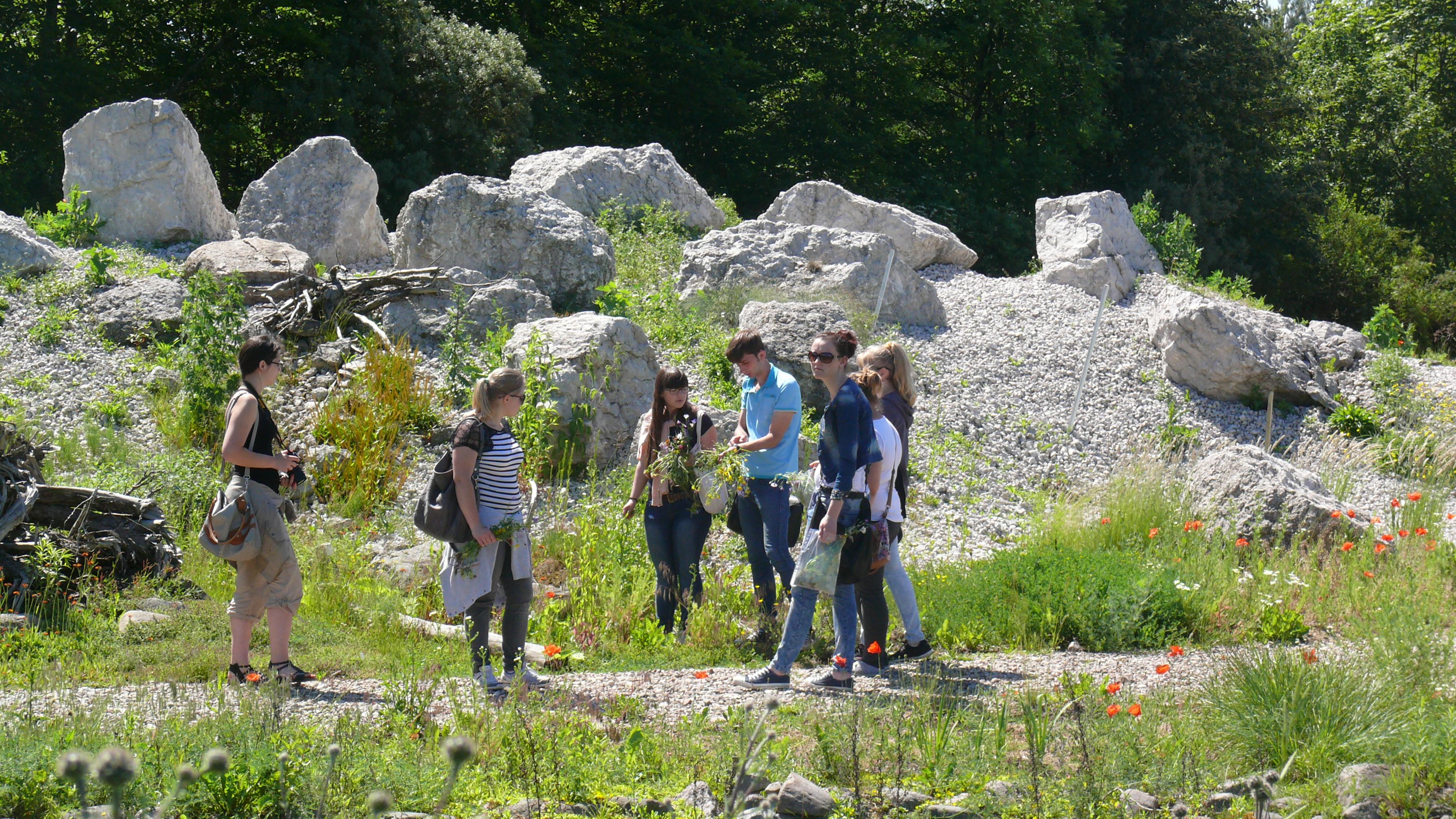 Edukacja w oparciu kolekcję traw w Ogrodzie Botanicznym KCRZG w Bydgoszczy
